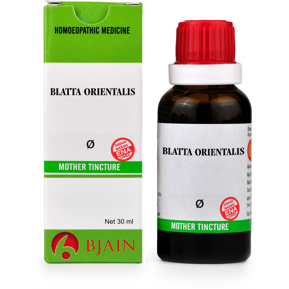 B Jain Blatta Orientalis 1X Q 30ml